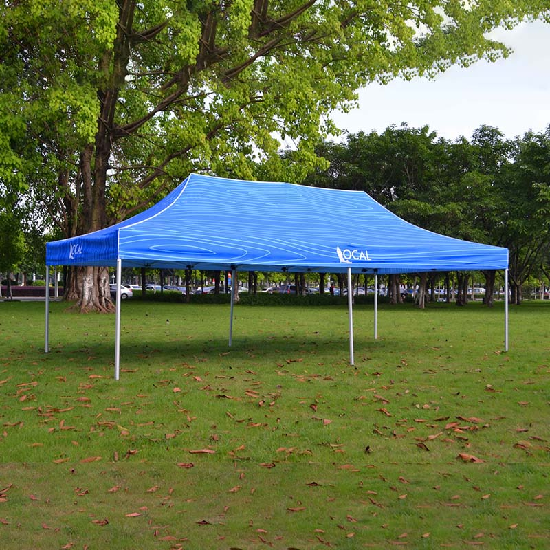 hot-sale canopy tent advertising in different color for sports-2